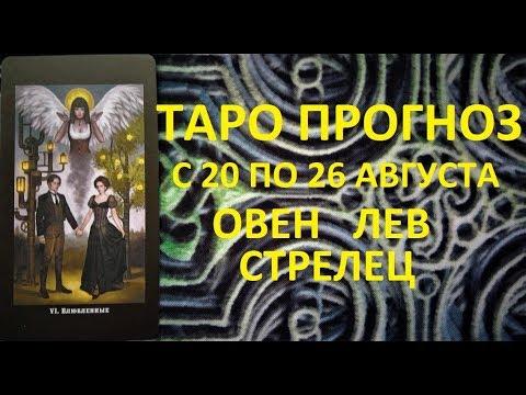 M ютуб онлайн лекции дмитрий троцкий