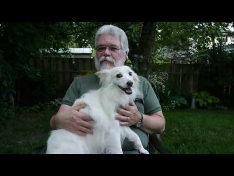 Furever Presents American Eskimo Dog Rescue Hero Rob Spicer