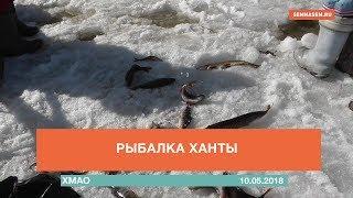 Рыбалка ханты