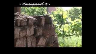 Distilleria Romano Levi fasi di produzione grappa parte prima