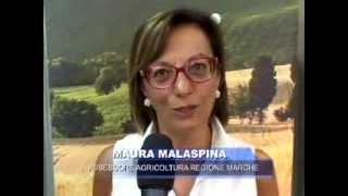 Maura Malaspina, Assessore Agricoltura Regione Marche