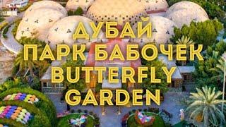 VLOG:Дубай/Парк бабочек - Butterfly Park/Куда сходить с ребёнком(Один из самых интересных парков в Дубае- Сад бабочек (Dubai Butterfly Garden), открывшийся в марте 2015 года. Он состоит..., 2017-01-09T05:37:33.000Z)