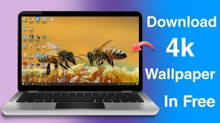 How To Download 4K Wallpapers / Thems For Laptop/PC - Edition 2020
