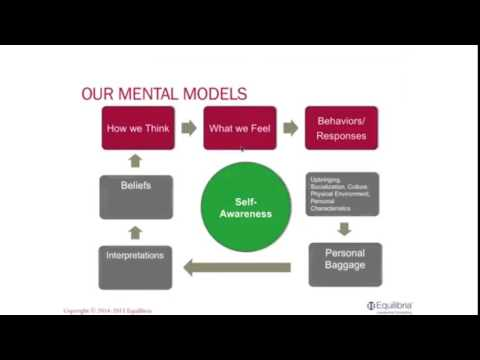 Our Mental Model | Nicole Lipkin