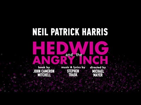 Hedwig and the Angry Inch is listed (or ranked) 8 on the list The Best Transgender Movies