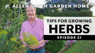 Easy to Grow Herbs   Garden to Kitchen: Garden Home VLOG (2019) 4K