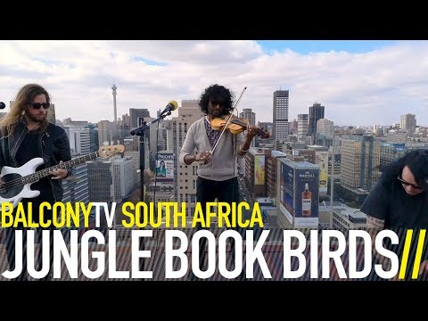 JUNGLE BOOK BIRDS - WEST AFRICAN SLAVES (BalconyTV)