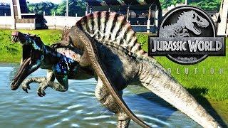 INDORAPTOR vs ESPINOSAURUS MUTANTE DINOSAURIO JURASSIC WORLD EVOLUTION