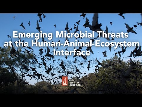 Emerging Microbial Threats at the Human-Animal-Ecosystem Interface by James Hughes, MD
