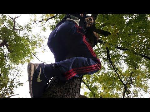 Как научиться лазать по деревьям
