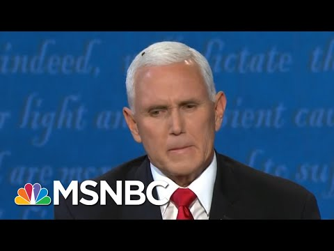 Buzzer Beater: Americans Delight In Fly's Cameo On VP Pence's Head | MSNBC