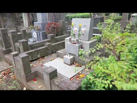 #TravelLife - A Freezing Stroll through Yanaka Cemetery I