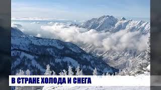 Мамонты и другие древние животные Сибири