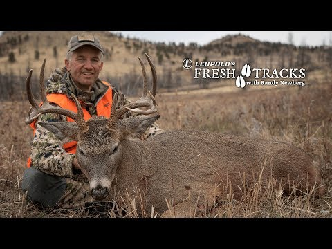 2017 Montana Deer With Randy Newberg (Amazon Version)