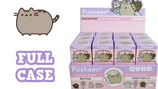 Pusheen Surprise Plush Blind Boxes Series 6 Magical Kitties Full Case Unboxing Opening Entire Case