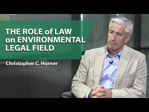 The Role of Law on Environmental Legal Field