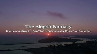 Why Alegría Farmacy