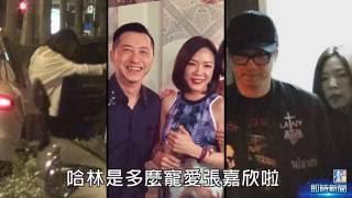【台灣壹週刊】哈林中年工具人 招招緊把張嘉欣