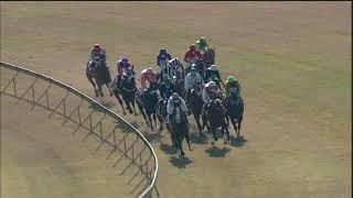 Vidéo de la course PMU PRIX CAPTAIN OF ALL
