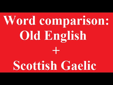 Word Comparison: Old English and Scottish Gaelic