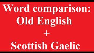 Word Comparison: Old English and Scottish Gaelic