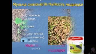 видео Особенности мульчирования почвы