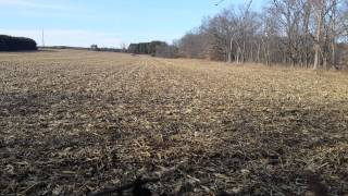 Ford 7600 chopping stalks