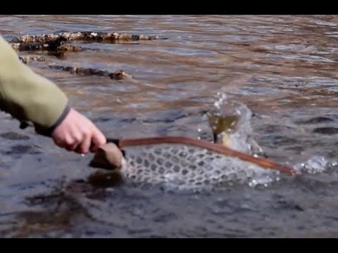 The art of dry fly fishing the provo river fly fishing for Provo river fishing report