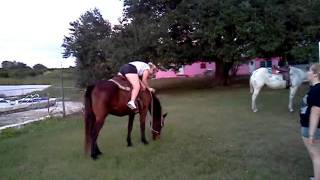 Download Video Woman vs horse MP3 3GP MP4