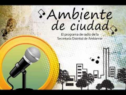 Programa Radial - Ambiente de Ciudad - 15 de Agosto