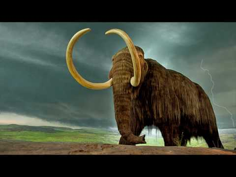 5 Monstruos Prehistóricos Captados En Video Y Vistos En La Vida Real.