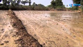 Paddy Cultivation with Rice Drum Seeder - Paadi Pantalu | Express TV
