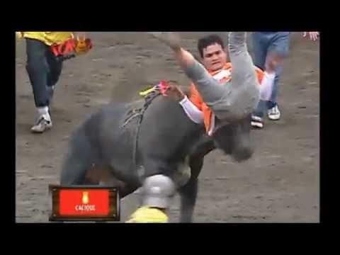 Mejor de Toros a la Tica - Zapote Costa Rica 2012-13