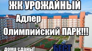 видео Где купить квартиру в в Сочи