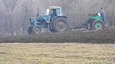 Костер безостый верховой корневищный злак, используется при создании культурных и улучшении природных сенокосов и пастбищ, а также при задернении склоновых земель. Растение дает высокие урожаи зеленой массы. Оно может сохраняться в травостое.