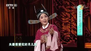 [梨园闯关我挂帅]黄梅戏《女驸马》选段 演唱:张淑景| CCTV戏曲 - YouTube
