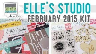 What's Inside: Elle's Studio February 2015 Kit (project Life) + Stamps + Wood Veneer