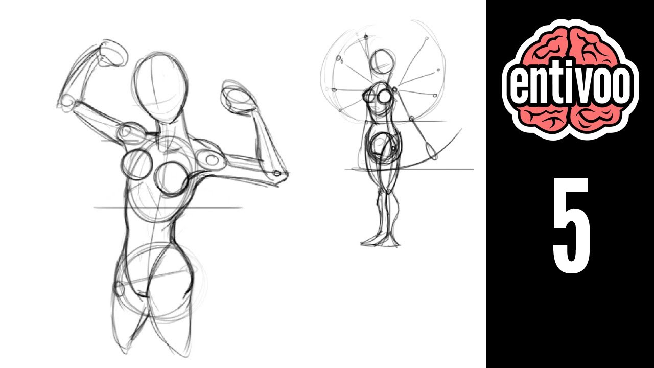 Aprende a dibujar el esqueleto de la mujer - Parte 1 - YouTube