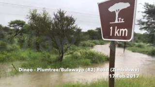 Dineo - Along Plumtree/Bulawayo Road