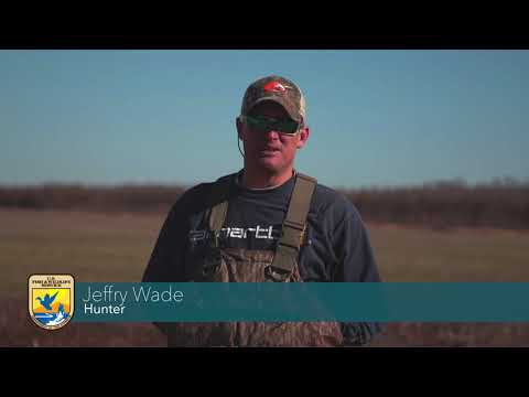 Duck Hunting At Cache River National Wildlife Refuge