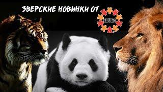 029. Новые контурные пазлы educa: наши впечатления