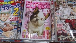 ビッグコミックオリジナル 2017年8号「高橋留美子劇場 不定形ファミリー...