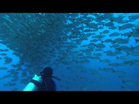 Costa Rica - Guanacaste (16th Jan 15) - Catalinas Islands & Conchal And Tamarindo Beach