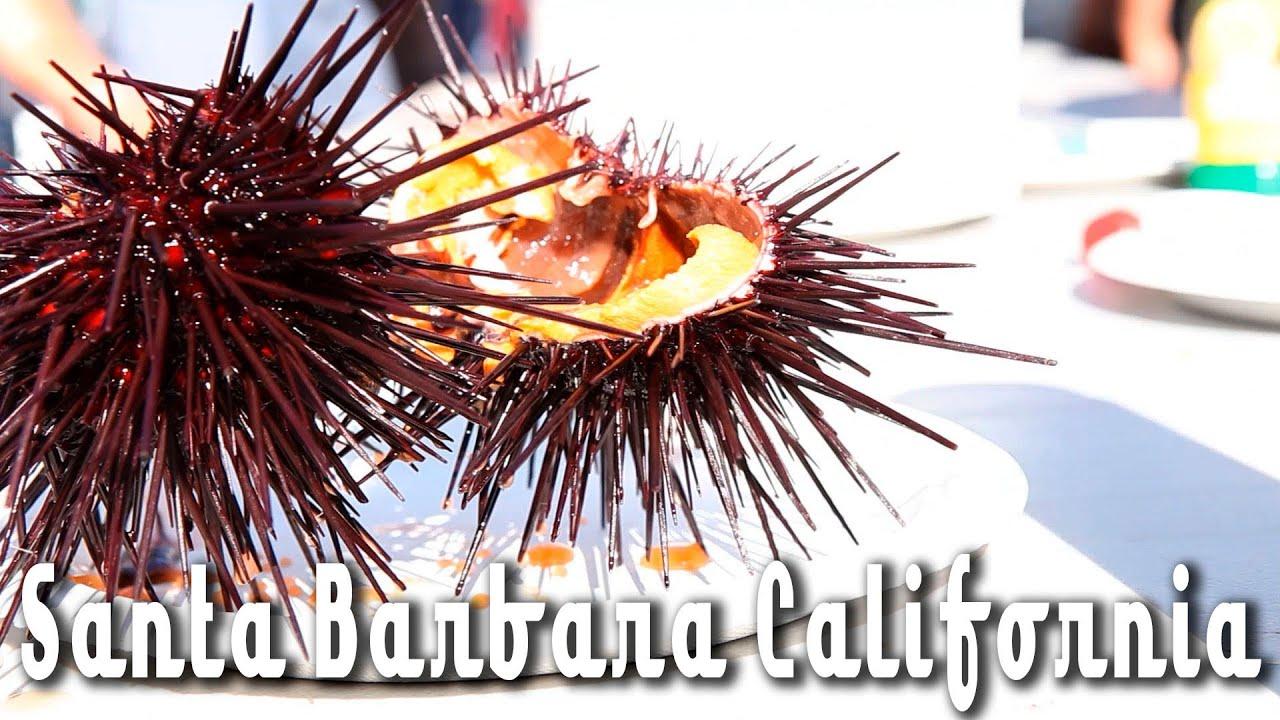Santa Barbara Fish Market Youtube