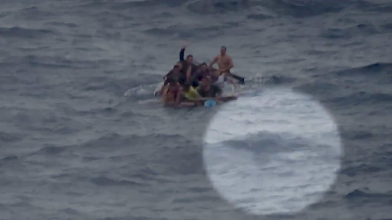 Αποτέλεσμα εικόνας για refugees shark