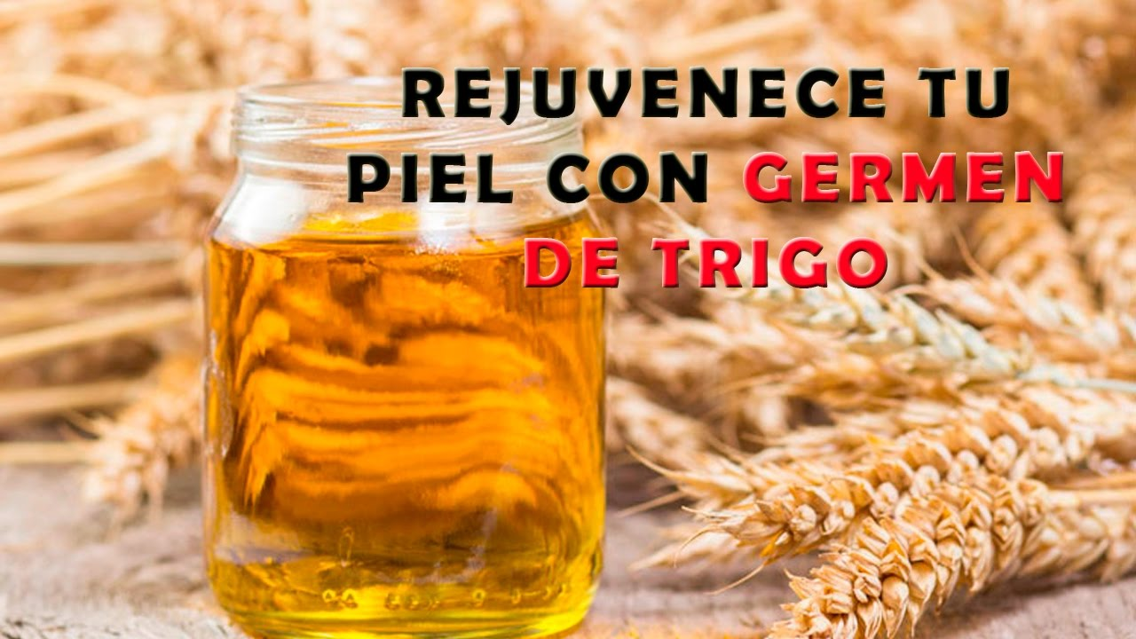 que contiene el aceite de germen de trigo