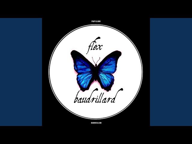 Dead System (Flex Baudrillard Remix)