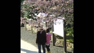 堀内孝雄ソロアルバム 「忘れかけていたラブ・ソング」より 作詩:中村...