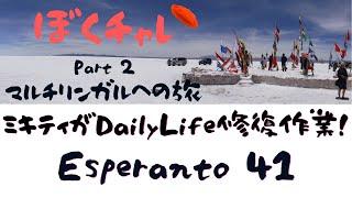 DuolingoでEsperanto #41 ミキティが「Daily Life」のひび割れ修復作業に挑戦!