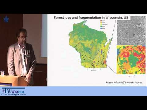 Loss of Biodiversity: Three Numbers, Two Concepts, and One Hypothesis